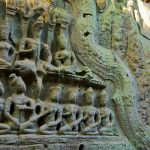 Stone carvings in Ta Prohm Temple