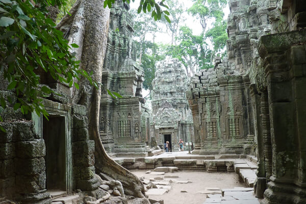 the courtyard of Ta Prohm, Cambodia packages