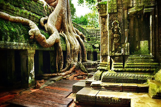 Things to do and see in Cambodia
