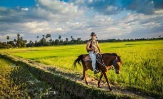 Cambodia in Depth – 8 Days