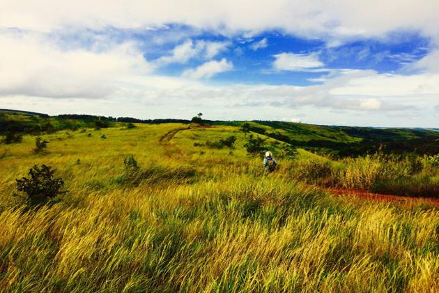 Immersing Yourself into Wilderness in Mondulkiri