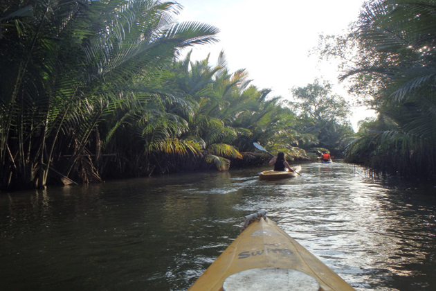 Kayaking-the-Green-Cathedral-kampot