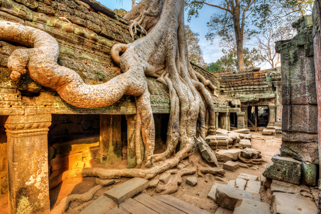 siem reap reflect personality of devotee to history
