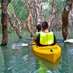 cambodia kayaking phnom penh tours