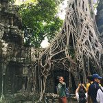 the ruin of Ta Prohm Temple, Siem Reap Food adventure tours