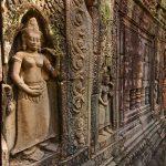 Ta Prohm temple cambodia classic tour