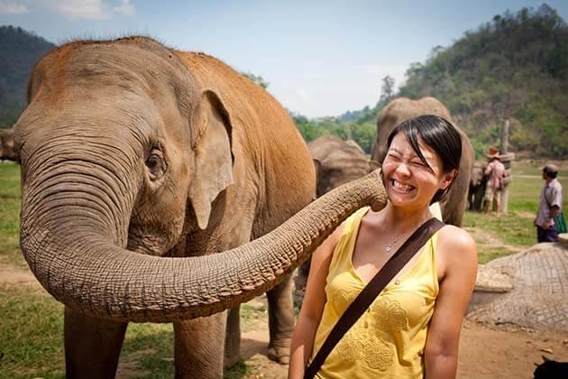 the Elephant Nature Park, Cambodia Thailand vacations
